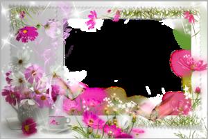 Из цветов нажмите для загрузки фото