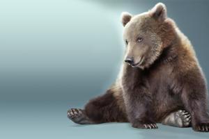 Фотоэффект - С медвежонком