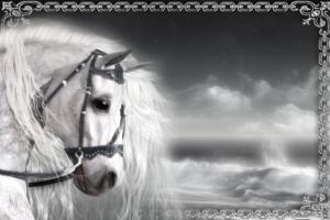 Фотоэффект онлайн - С лошадью