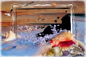 Рамка онлайн - Морские ракушки
