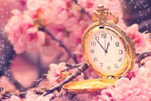 весенний фотоэффект золотое время можете познакомиться одинокой